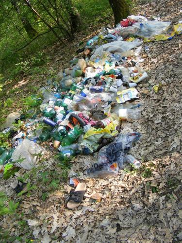 Image de l'article Projet de court-métrage: éco-responsabilité citoyenne et comportements stupides.